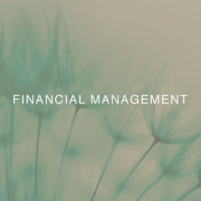 01-two-birds-financial-management