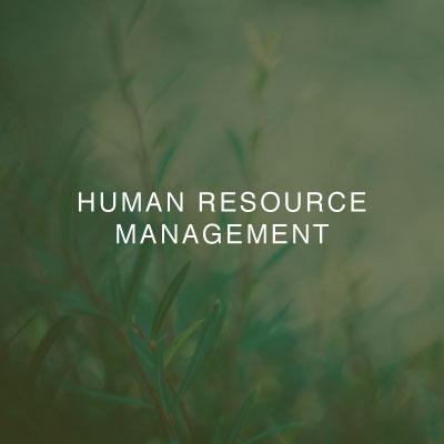01-two-birds-human-resource-management